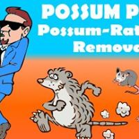 Possum Piper
