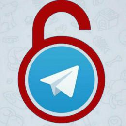 Telegram bot — @ProxyFather_bot