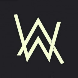 Alan Walker bot