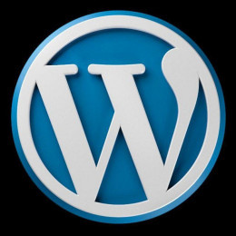 Wordpress User Enumeration