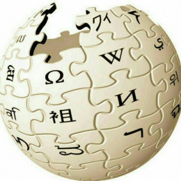 Wikipedia Search